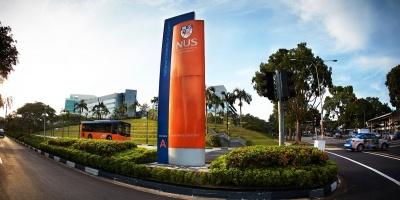 <span>Личный опыт</span> Национальный университет Сингапура