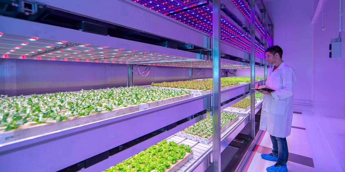 Новые технологии на службе у фермеров