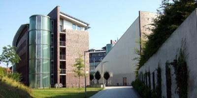 <span>Личный опыт:</span> Гамбургский технический университет