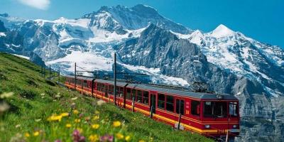 Образовательный гид: как устроена учеба вШвейцарии