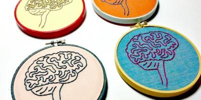 Напряги извилины: 10фактов отом, как учится наш мозг