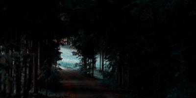 ZÖM: студенты СПбГУ придумали новую технологию ночного видения