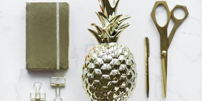 ДНК ананаса: как смешать науку иискусство вобразовании