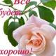 Вероника Мидори