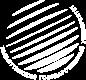 Гуманитарно-педагогический институт Тольяттинского государственного университета