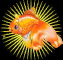 Детский сад № 357 комбинированного вида «Золотая рыбка»