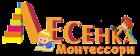 Монтессори-центр развития детей «Лесенка»