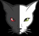 Роллер-Школа «Городские Коты»