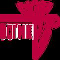 Гуманитарно-информационный факультет Восточно-Сибирского государственного института культуры