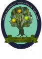 Средняя общеобразовательная школа N 243