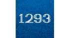 Школа № 1293