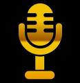 «Школа голоса и речи», тренинговый проект