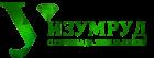 Многопрофильная олимпиада школьников Уральского федерального университета «Изумруд»
