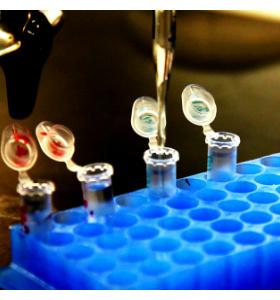Профессия Биотехнолог