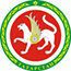 Правительтство Татарстана