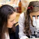 Лабораторная работа по цитологии: световая микроскопия.